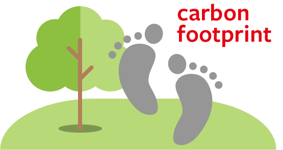 L'impatto della nostra impronta di carbonio sull'ambiente